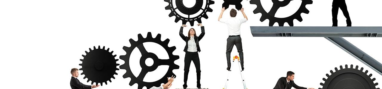 Wer will seine Projekte nicht erfolgreich umsetzen?